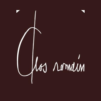 logo-sd-small-optis-bg