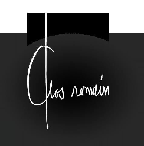 logo-sd+radialbg